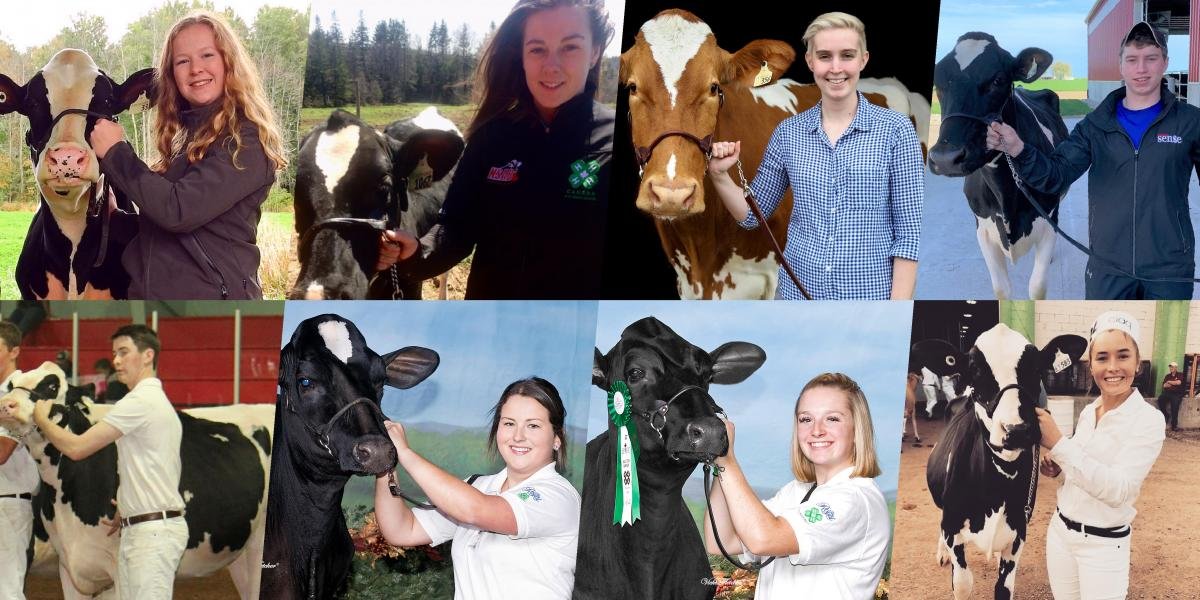 World Dairy Expo Competition Winners