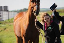 Casey Morey jogs a horse